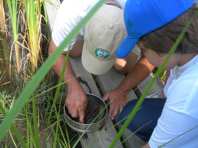 New Audubon Center grows nature appreciation for summer campers